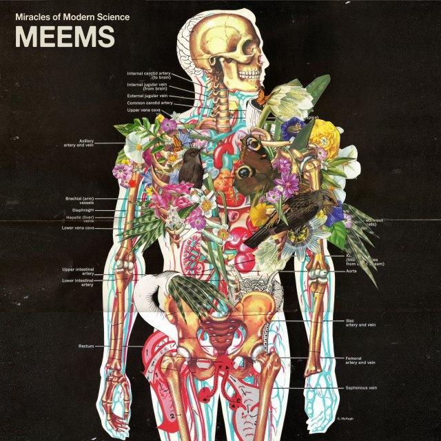 meems